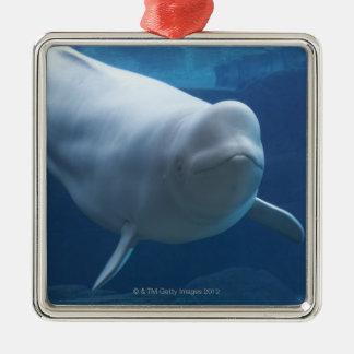 Beluga whale (Delphinapterus leucas) Christmas Ornament