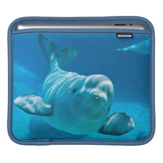 Beluga Whale iPad Sleeve