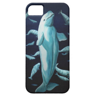 Beluga Whale iPhone5 Case Whale Smartphone Cases Barely There iPhone 5 Case