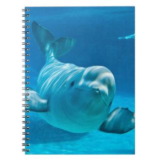 Beluga Whale Notebook