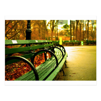 Bench at Central Park, New York City Postcard