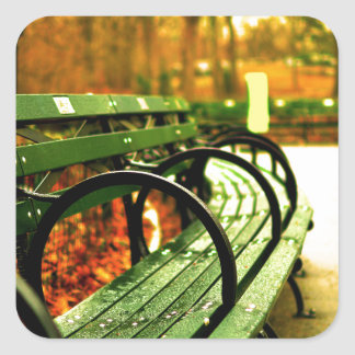 Bench at Central Park, New York City Square Sticker