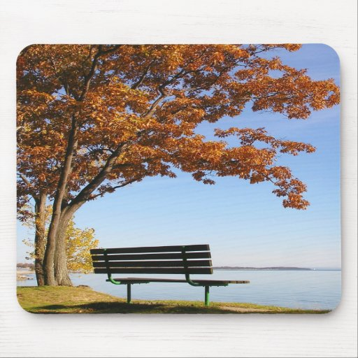 Bench Under Autumn Branches Mousepad