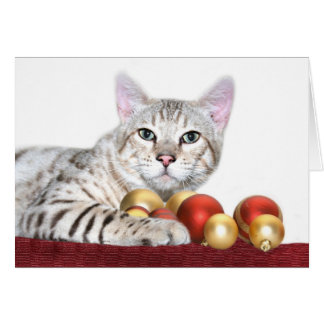 Bengal cat Christmas Card