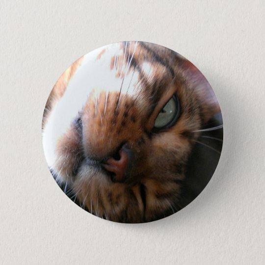 Bengal cat crazy 6 cm round badge