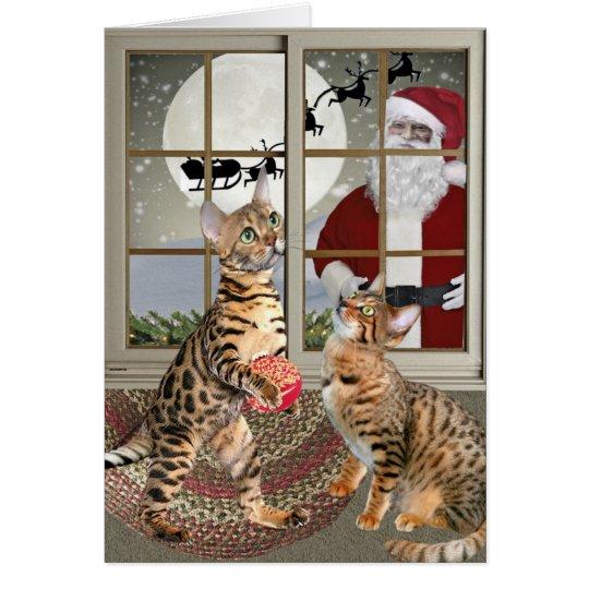 Bengal Cat Watching Santa Cards