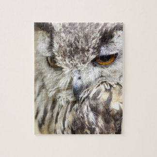 Bengal Eagle Owl Jigsaw Puzzle