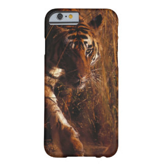 Bengal Tiger Barely There iPhone 6 Case