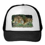 Bengal Tiger Baseball Hat