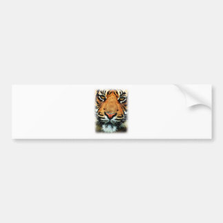 Bengal Tiger Big Cat Bumper Sticker