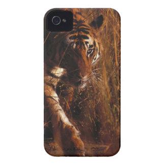 Bengal Tiger Case-Mate iPhone 4 Cases