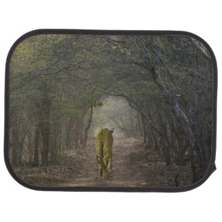 Bengal Tiger in the forest in Ranthambore Car Mat