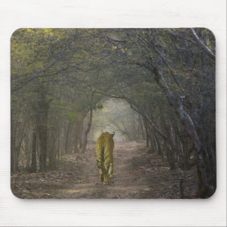 Bengal Tiger in the forest in Ranthambore Mouse Mat