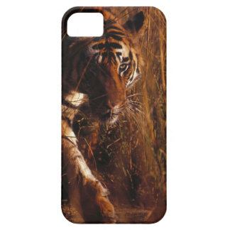 Bengal Tiger iPhone 5 Cover