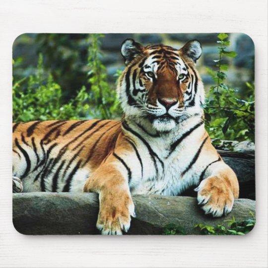 bengal tiger mouse mat