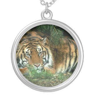 Bengal Tiger Necklace