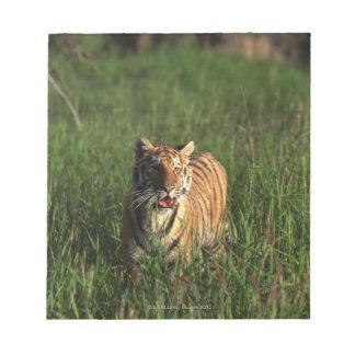 Bengal tiger notepad