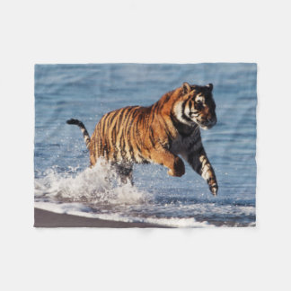 Bengal Tiger (Panthera Tigris) Fleece Blanket