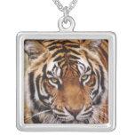 Bengal Tiger, Panthera tigris Personalized Necklace