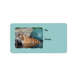 Bengal Tiger Photo Light Blue Gift Tags Address Label