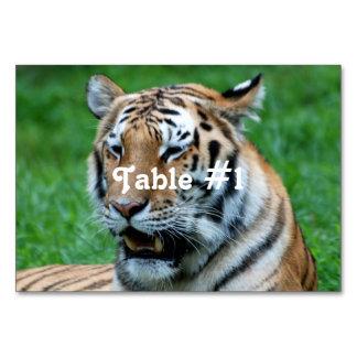 Bengal Tiger Table Card