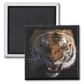 Bengal Tiger Wildlife Big Cat Lover Photo Refrigerator Magnets