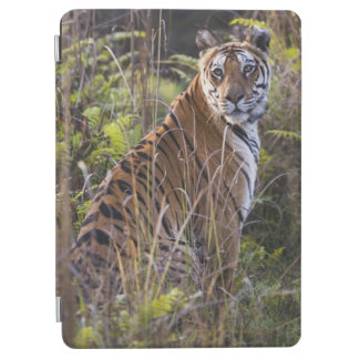 Bengal tigress in tall grass, trying to hunt, iPad air cover
