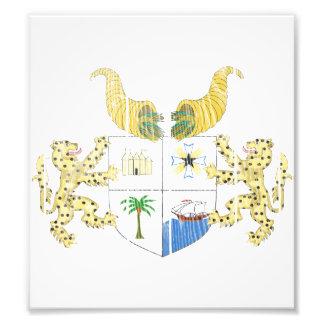 Benin Coat Of Arms Photograph