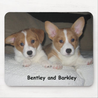 Bentley & Barkley Mouse Mat
