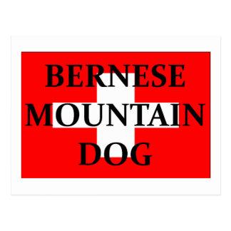 ber mt dog name switzerland flag.png postcard