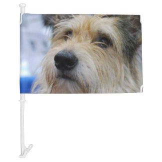 Berger Picard Dog Car Flag
