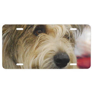Berger Picard Dog License Plate