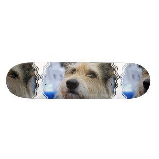 Berger Picard Skateboard
