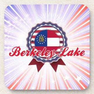 Berkeley Lake GA Coaster