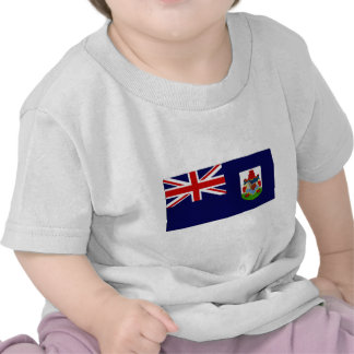 Bermuda Government Ensign Flag T Shirts