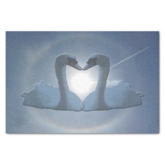 Bermuda Grey Swan Sun's Halo Tissue Paper