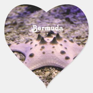 Bermuda Starfish Heart Sticker