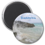 Bermuda Wave Magnet