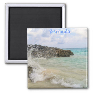 Bermuda Wave Picture by Celeste Sheffey Magnet