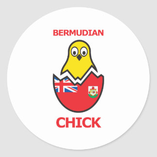 Bermudian Chick Round Sticker