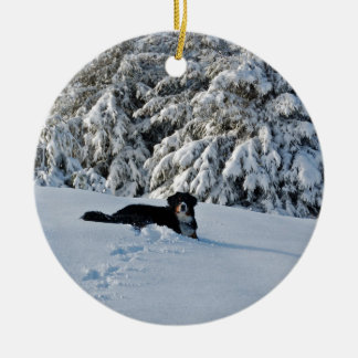 Berner in the Snow Christmas Ornament