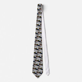 Berner Oberland bahn train Tie