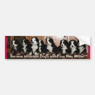 Berner Puppy- BUMPERS.. Bumper Sticker