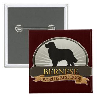 Bernese 15 Cm Square Badge