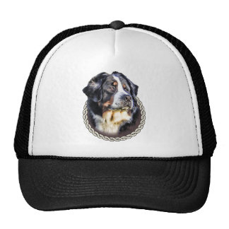 Bernese Mountain Dog 001 Cap
