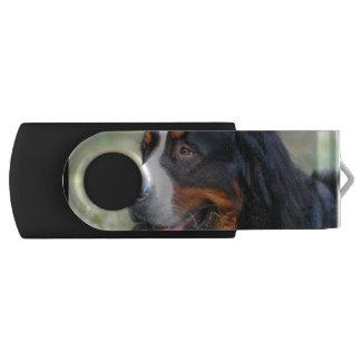 bernese-mountain-dog-10 swivel USB 2.0 flash drive