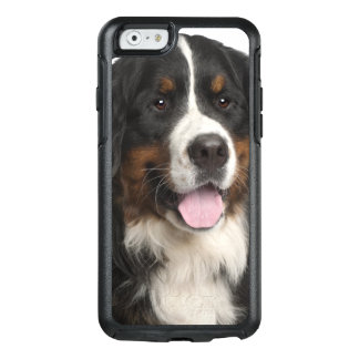 Bernese Mountain Dog (1 year old) OtterBox iPhone 6/6s Case