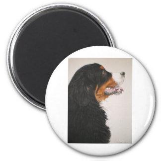 Bernese Mountain Dog 2 Magnet