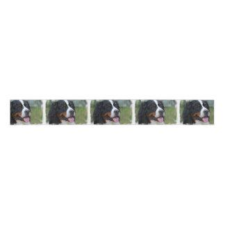 bernese-mountain-dog-7 grosgrain ribbon