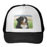 Bernese Mountain Dog 9Y066D-046 Trucker Hat